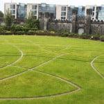 Garden inside the Dublin Castle